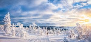 Shutterstock - online Slike - Slika jpg png