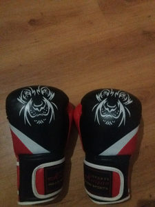 Rukavice za kick box