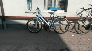Biciklo Unisex