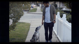 Uzgajivačnica pasa traži Radnika - TUZLA