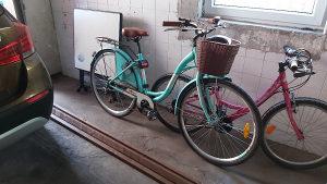 Biciklo Alpina zensko