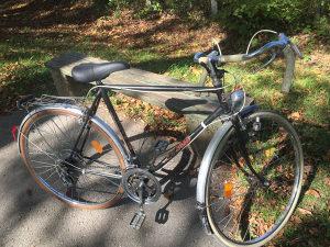 Sporsko biciklo-trcacko