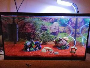 Akvarij za ribice 40l