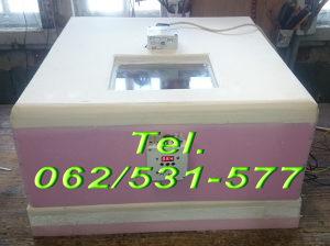 Kralj Automatski Inkubator extra  do 96 jaja BRAMA