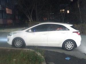 Hyundai Drugi