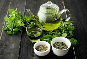 Zeleni čaj rinfuza Sencha(više od 200kg na stanju)