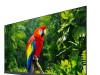 TV TCL LED 55EC780 Android, UHD, Titanium metal front