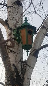 Kućice za ptice