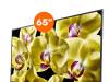 Sony 65'' XG8096 4K Android TV